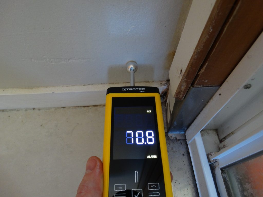 Ceiling moisture inspection in West Auckland
